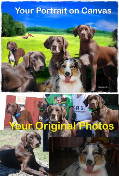 Put in a single artwork all the beautiful memories of your past and present pets, all together!